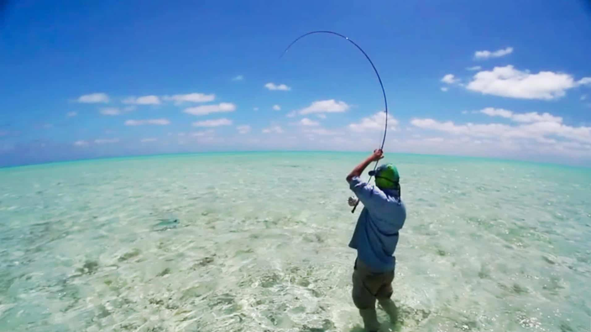 Saltwater Spinning Reels vs freshwater fishing