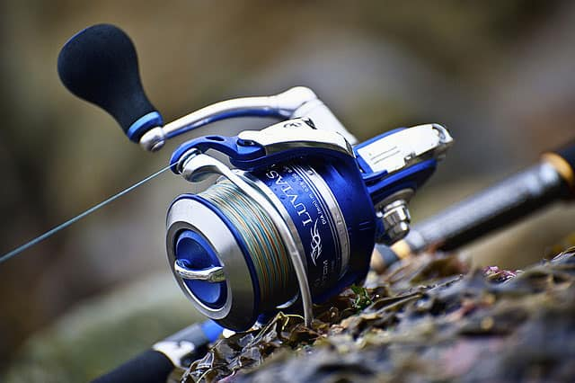 saltwater spinning reels guide