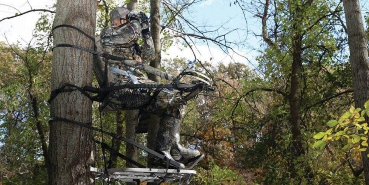 What's The Best Height For A Tree Stand
