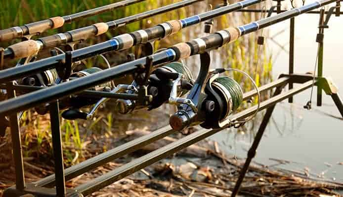 When To Replace Your Fishing Line