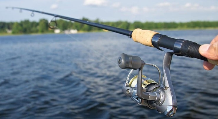 Choose The Best Bass Rod For You